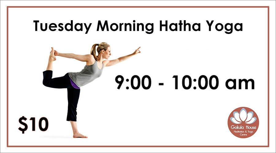 $10 Yoga Class Tuesday Morning Collingwood